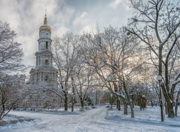 Зимняя программа 2019 в CXID OPERA